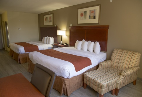 Comfort Suites At Fairgrounds-Casino, FL 33584 near  View Point 3