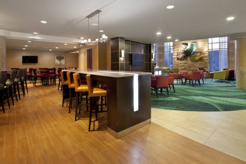 SpringHill Suites by Marriott Minneapolis-St. Paul Airport/Mall of America, MN 55425 near Minneapolis-saint Paul International Airport (wold-chamberlain Field) View Point 19