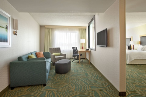 SpringHill Suites by Marriott Minneapolis-St. Paul Airport/Mall of America, MN 55425 near Minneapolis-saint Paul International Airport (wold-chamberlain Field) View Point 10