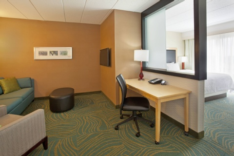 SpringHill Suites by Marriott Minneapolis-St. Paul Airport/Mall of America, MN 55425 near Minneapolis-saint Paul International Airport (wold-chamberlain Field) View Point 8