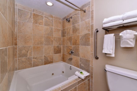 Holiday Inn Express Hotel & Suites Indianapolis , IN 46224 near Indianapolis International Airport View Point 6