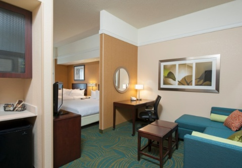 SpringHill Suites by Marriott Grand Rapids Airport Southeast, MI 49512 near Gerald R. Ford International Airport View Point 5