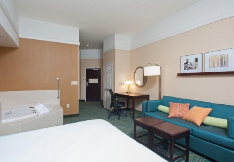 SpringHill Suites by Marriott Grand Rapids Airport Southeast, MI 49512 near Gerald R. Ford International Airport View Point 2