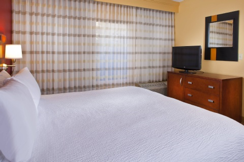 Courtyard by Marriott Orlando Airport, FL 32812 near Orlando International Airport View Point 2