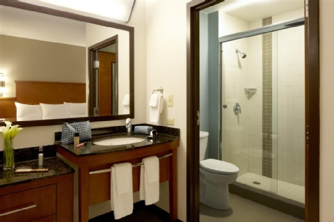 Hyatt Place Chantilly/Dulles Airport-South, VA 20151 near Washington Dulles International Airport View Point 3