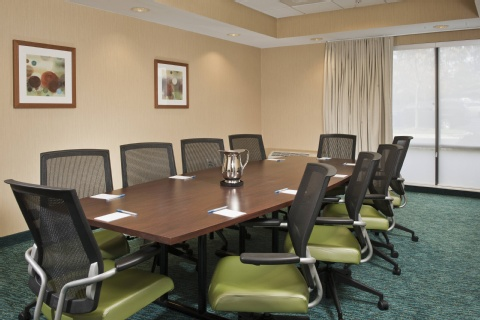 SpringHill Suites by Marriott Raleigh-Durham Airport/Research Triangle Park, NC 27703 near Raleigh-durham International Airport View Point 18