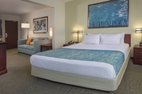 SpringHill Suites by Marriott Raleigh-Durham Airport/Research Triangle Park, NC 27703 near Raleigh-durham International Airport View Point 8