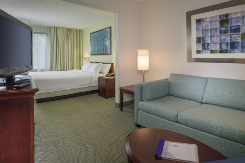 SpringHill Suites by Marriott Raleigh-Durham Airport/Research Triangle Park, NC 27703 near Raleigh-durham International Airport View Point 6