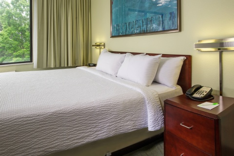 SpringHill Suites by Marriott Raleigh-Durham Airport/Research Triangle Park, NC 27703 near Raleigh-durham International Airport View Point 5