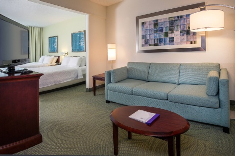 SpringHill Suites by Marriott Raleigh-Durham Airport/Research Triangle Park, NC 27703 near Raleigh-durham International Airport View Point 4