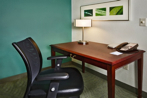 SpringHill Suites by Marriott Raleigh-Durham Airport/Research Triangle Park, NC 27703 near Raleigh-durham International Airport View Point 3