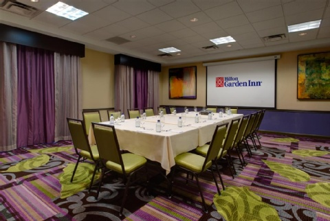 Hilton Garden Inn Raleigh-Durham Airport, NC 27560 near Raleigh-durham International Airport View Point 12