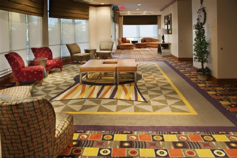 Hilton Garden Inn DFW Airport South, TX 75061 near Dallas-fort Worth International Airport View Point 33