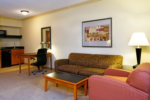 Holiday Inn Express & Suites Irving Dfw Airport North, TX 75063 near Dallas-fort Worth International Airport View Point 19