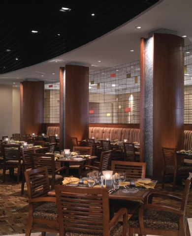 Hyatt Regency DFW, TX 75261 near Dallas-fort Worth International Airport View Point 10