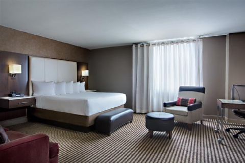 Hyatt Regency DFW, TX 75261 near Dallas-fort Worth International Airport View Point 3