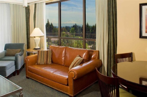 Doubletree by Hilton Seattle Airport, WA 98188 near Seattle-tacoma International Airport View Point 31