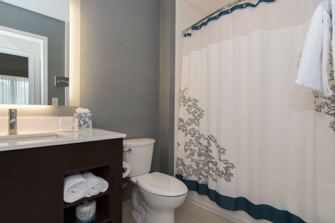 Residence Inn by Marriott Raleigh-Durham Airport/Brier Creek, NC 27617 near Raleigh-durham International Airport View Point 4