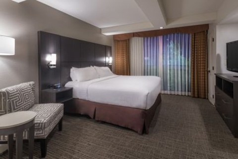 Holiday Inn and Suites Phoenix Airport North, AZ 85008 near Sky Harbor International Airport View Point 13