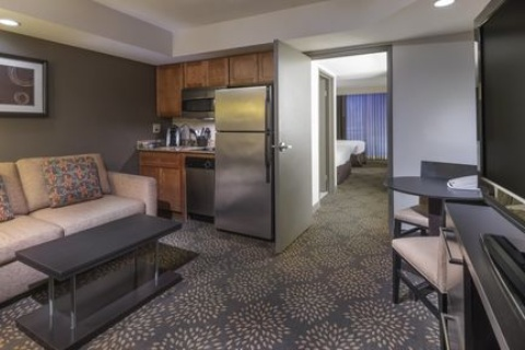 Holiday Inn and Suites Phoenix Airport North, AZ 85008 near Sky Harbor International Airport View Point 3