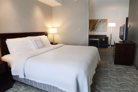 SpringHill Suites by Marriott Dulles Airport, VA 20166 near Washington Dulles International Airport View Point 4