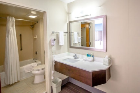 Holiday Inn Express & Suites Austin Airport, TX 78741 near Austin-bergstrom International Airport View Point 35