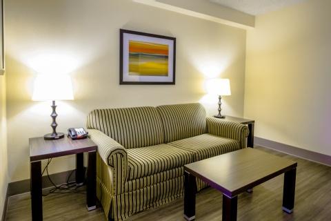 Holiday Inn Express & Suites Austin Airport, TX 78741 near Austin-bergstrom International Airport View Point 10