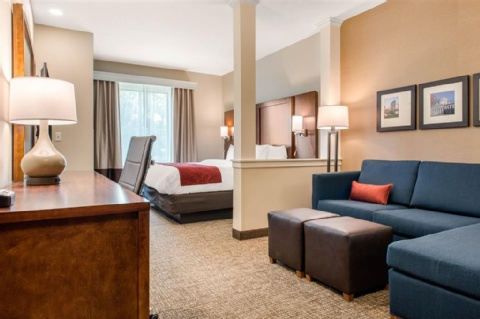 Comfort Suites Columbus Airport, OH 43219 near Port Columbus International Airport View Point 11
