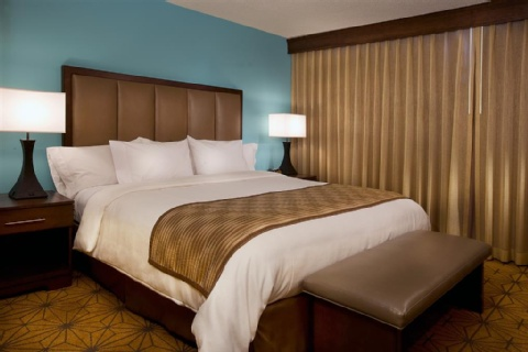 Embassy Suites by Hilton Kansas City International Airport, MO 64153 near Kansas City International Airport View Point 9