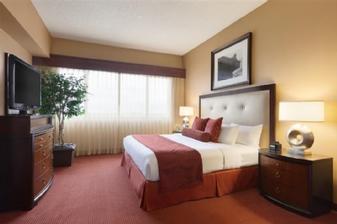 Embassy Suites by Hilton Kansas City International Airport, MO 64153 near Kansas City International Airport View Point 7