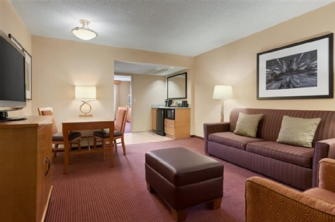 Embassy Suites by Hilton Kansas City International Airport, MO 64153 near Kansas City International Airport View Point 4