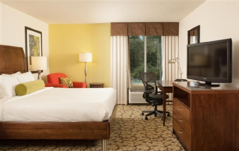 Hilton Garden Inn Orlando Airport, FL 32822 near Orlando International Airport View Point 9