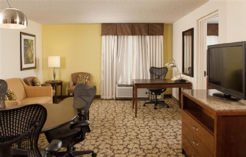 Hilton Garden Inn Orlando Airport, FL 32822 near Orlando International Airport View Point 4