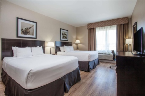 Wingate by Wyndham Edmonton Airport, AB T9E 8A5 near Edmonton International Airport View Point 7