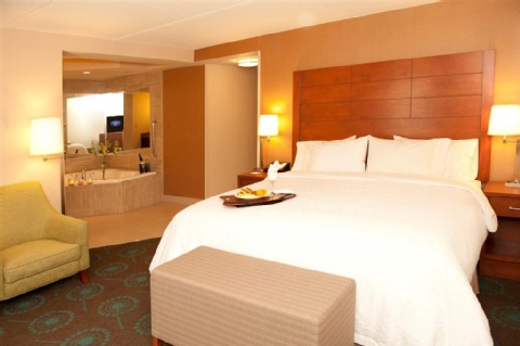 The Hampton Inn by Hilton Brampton Toronto, ON L6T 000 near Toronto Pearson International Airport View Point 7