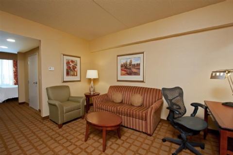 Hilton Garden Inn Indianapolis Airport, IN 46231 near Indianapolis International Airport View Point 5
