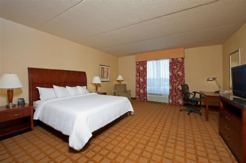 Hilton Garden Inn Indianapolis Airport, IN 46231 near Indianapolis International Airport View Point 3