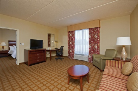 Hilton Garden Inn Indianapolis Airport, IN 46231 near Indianapolis International Airport View Point 2