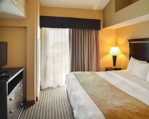 COMFORT SUITES DFW AIRPORT, TX 75063 near Dallas-fort Worth International Airport View Point 8