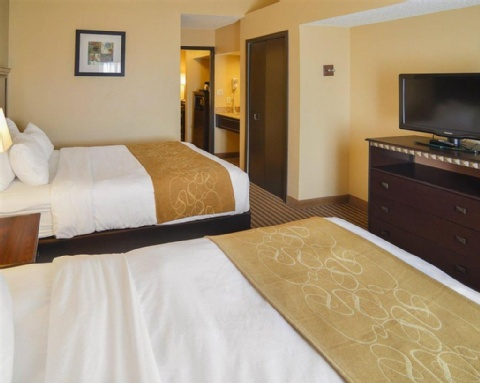 COMFORT SUITES DFW AIRPORT, TX 75063 near Dallas-fort Worth International Airport View Point 4