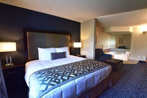 Best Western Flint Airport Inn & Suites, MI  48507 near Bishop International Airport View Point 13