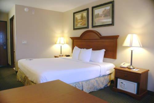 Best Western Port Columbus, OH 43219 near Port Columbus International Airport View Point 7