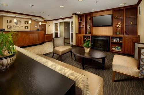 Comfort Inn & Suites Airport Dulles-Gateway, VA 20166 near Washington Dulles International Airport View Point 12
