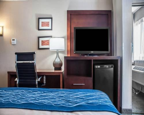Comfort Inn University, NY 14226 near Buffalo Niagara International Airport View Point 12