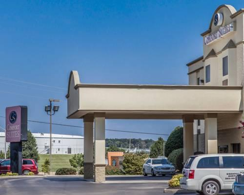 Comfort Suites Airport Alcoa, TN 37701 near Mcghee Tyson Airport View Point 15