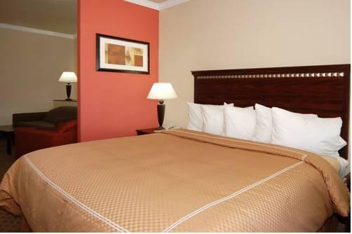 Comfort Suites Houston, TX 77032 near George Bush Intercontinental Airport View Point 15