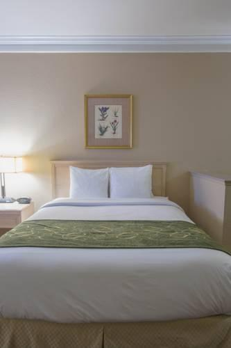 Comfort Suites Humble - Houston North, TX 77339 near George Bush Intercontinental Airport View Point 19