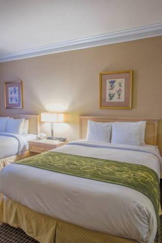Comfort Suites Humble - Houston North, TX 77339 near George Bush Intercontinental Airport View Point 16