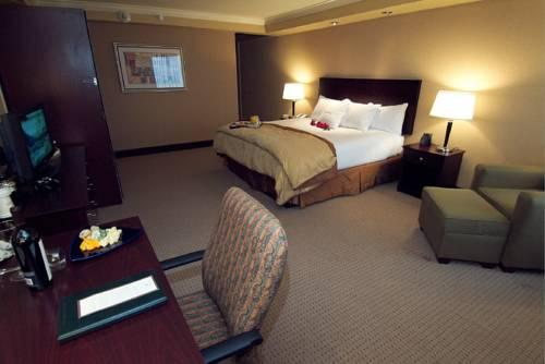 Doubletree Hotel Pittsburgh Airport, PA 15108 near Pittsburgh International Airport View Point 14