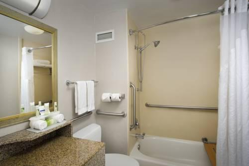 Holiday Inn Express Baltimore At The Stadiums, MD 21230 near Baltimore-washington International Thurgood Marshall Airport View Point 16